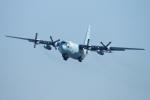 485k60さんが、岐阜基地で撮影した航空自衛隊 C-130H Herculesの航空フォト(写真)