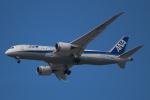 Ryousukeさんが、ボーイングフィールドで撮影した全日空 787-8 Dreamlinerの航空フォト(写真)