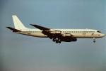 tassさんが、成田国際空港で撮影したACSオブ・カナダ・エア・チャーター・システムズ DC-8-55CF Jet Traderの航空フォト(写真)