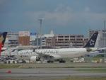 485k60さんが、福岡空港で撮影したタイ国際航空 A330-322の航空フォト(写真)
