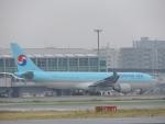 485k60さんが、福岡空港で撮影した大韓航空 A330-223の航空フォト(飛行機 写真・画像)