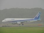 485k60さんが、福岡空港で撮影した全日空 A320-211の航空フォト(飛行機 写真・画像)