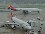 485k60さんが、福岡空港で撮影したアシアナ航空 A330-323Xの航空フォト(飛行機 写真・画像)