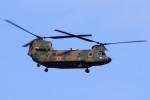 kaeru6006さんが、習志野演習場で撮影した陸上自衛隊 CH-47JAの航空フォト(写真)