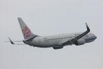 funi9280さんが、福岡空港で撮影したチャイナエアライン 737-8Q8の航空フォト(写真)