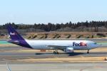 mogusaenさんが、成田国際空港で撮影したフェデックス・エクスプレス A300F4-605Rの航空フォト(写真)