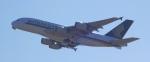 はまちのお寿司さんが、関西国際空港で撮影したシンガポール航空 A380-841の航空フォト(写真)