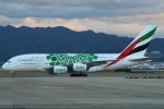 セブンさんが、関西国際空港で撮影したエミレーツ航空 A380-861の航空フォト(飛行機 写真・画像)