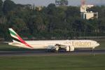 安芸あすかさんが、シンガポール・チャンギ国際空港で撮影したエミレーツ航空 777-31H/ERの航空フォト(写真)
