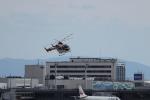 HD乗りさんが、伊丹空港で撮影した朝日新聞社 MD 900/902の航空フォト(写真)