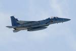 オポッサムさんが、新千歳空港で撮影した航空自衛隊 F-15DJ Eagleの航空フォト(写真)