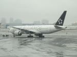 バンチャンさんが、ニューアーク・リバティー国際空港で撮影したユナイテッド航空 777-224/ERの航空フォト(写真)