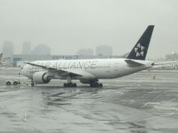 バンチャンさんが、ニューアーク・リバティー国際空港で撮影したユナイテッド航空 777-224/ERの航空フォト(飛行機 写真・画像)