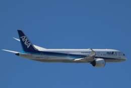 imosaさんが、羽田空港で撮影した全日空 787-9の航空フォト(写真)