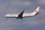 けいとパパさんが、羽田空港で撮影した日本航空 737-846の航空フォト(写真)