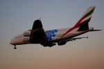 X8618さんが、成田国際空港で撮影したエミレーツ航空 A380-861の航空フォト(写真)