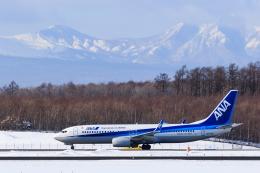 noriphotoさんが、新千歳空港で撮影した全日空 737-8ALの航空フォト(写真)