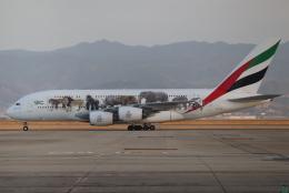 tmkさんが、関西国際空港で撮影したエミレーツ航空 A380-861の航空フォト(写真)