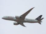 White Pelicanさんが、関西国際空港で撮影したエア・インディア 787-8 Dreamlinerの航空フォト(写真)
