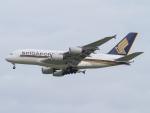 Mame @ TYOさんが、シンガポール・チャンギ国際空港で撮影したシンガポール航空 A380-841の航空フォト(写真)