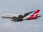 Mame @ TYOさんが、シンガポール・チャンギ国際空港で撮影したカンタス航空 A380-842の航空フォト(写真)