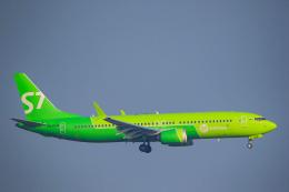 航空フォト:VQ-BGW S7航空 737 MAX 8