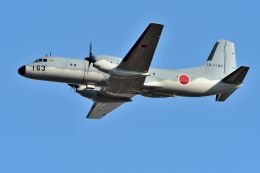 うめやしきさんが、厚木飛行場で撮影した航空自衛隊 YS-11A-402EAの航空フォト(写真)