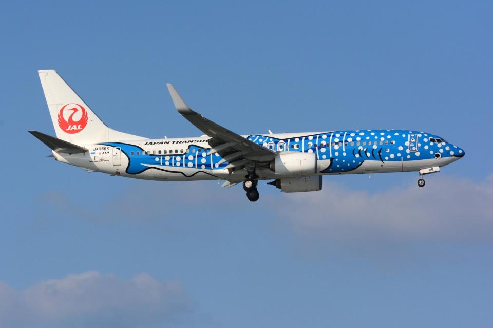 sin747さんの日本トランスオーシャン航空 Boeing 737-800 (JA05RK) 航空フォト