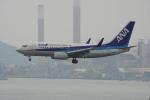 神宮寺ももさんが、香港国際空港で撮影した全日空 737-781の航空フォト(写真)