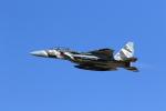 sashikura2004さんが、新田原基地で撮影した航空自衛隊 F-15DJ Eagleの航空フォト(写真)