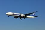garrettさんが、成田国際空港で撮影した全日空 777-381/ERの航空フォト(写真)