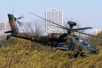 Flankerさんが、習志野演習場で撮影した陸上自衛隊 AH-64Dの航空フォト(写真)