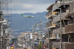 デウスーラ294さんが、伊丹空港で撮影した全日空 DHC-8 Dash 8の航空フォト(写真)