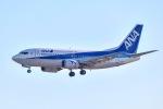 筑波のヘリ撮りさんが、成田国際空港で撮影したANAウイングス 737-54Kの航空フォト(写真)