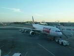 makoto7156さんが、ジョン・F・ケネディ国際空港で撮影したTAM航空 A330-223の航空フォト(写真)