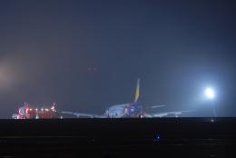 Jyunpei Ohyamaさんが、広島空港で撮影したアシアナ航空 A320-232の航空フォト(飛行機 写真・画像)