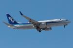 木人さんが、成田国際空港で撮影した全日空 737-881の航空フォト(写真)
