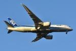 Izumixさんが、成田国際空港で撮影した全日空 787-8 Dreamlinerの航空フォト(写真)