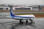 ハミングバードさんが、宮崎空港で撮影した全日空 A320-211の航空フォト(写真)