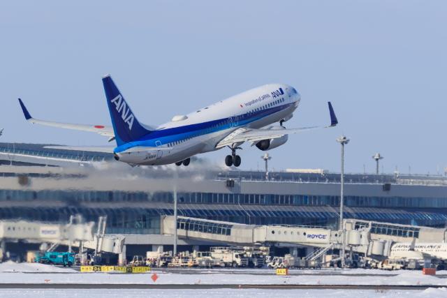 noriphotoさんが、新千歳空港で撮影した全日空 737-881の航空フォト(飛行機 写真・画像)