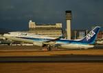 FRTさんが、伊丹空港で撮影した全日空 737-8ALの航空フォト(飛行機 写真・画像)