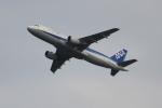 OMAさんが、羽田空港で撮影した全日空 A320-211の航空フォト(写真)