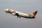 ハミングバードさんが、宮崎空港で撮影したスカイネットアジア航空 737-4M0の航空フォト(写真)