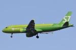 camelliaさんが、成田国際空港で撮影したS7航空 A320-214の航空フォト(写真)