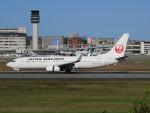 sp3混成軌道さんが、伊丹空港で撮影した日本航空 737-846の航空フォト(写真)