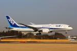 YASKYさんが、成田国際空港で撮影した全日空 787-8 Dreamlinerの航空フォト(写真)
