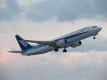 ONOさんが、能登空港で撮影した全日空 737-881の航空フォト(写真)