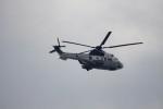 senbaさんが、神奈川県横須賀市 観音崎灯台で撮影した陸上自衛隊 EC225LP Super Puma Mk2+の航空フォト(写真)