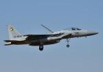 じーく。さんが、茨城空港で撮影した航空自衛隊 F-15J Eagleの航空フォト(写真)