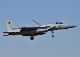 じーく。さんが、茨城空港で撮影した航空自衛隊 F-15J Eagleの航空フォト(飛行機 写真・画像)